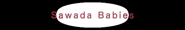 Sawada Babies